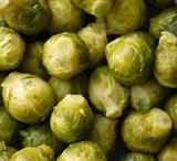 Brussel Sprouts - Catskill
